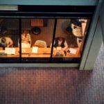 4-proven-ways-to-recapture-lost-customer-engagement